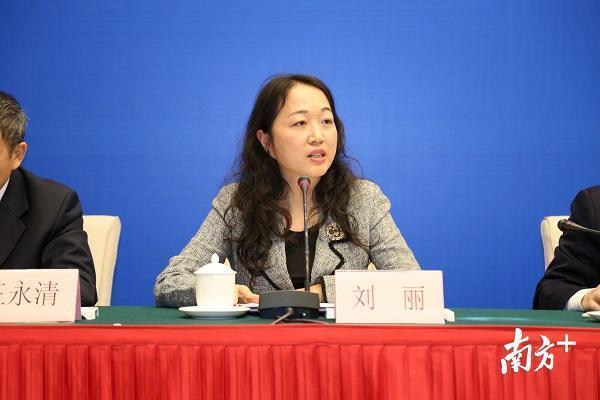 广东省国税局国际税务处处长刘丽