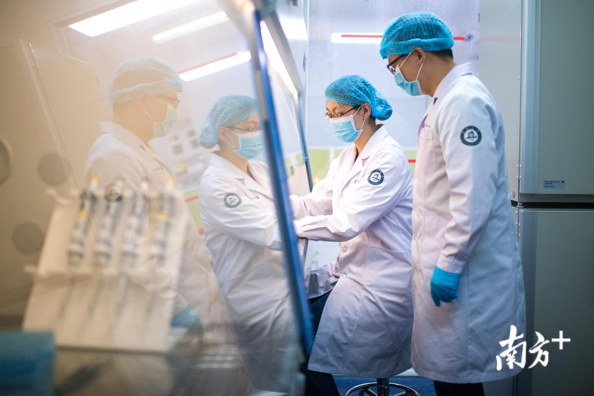 团队科研人员正在进行细胞培养操作。