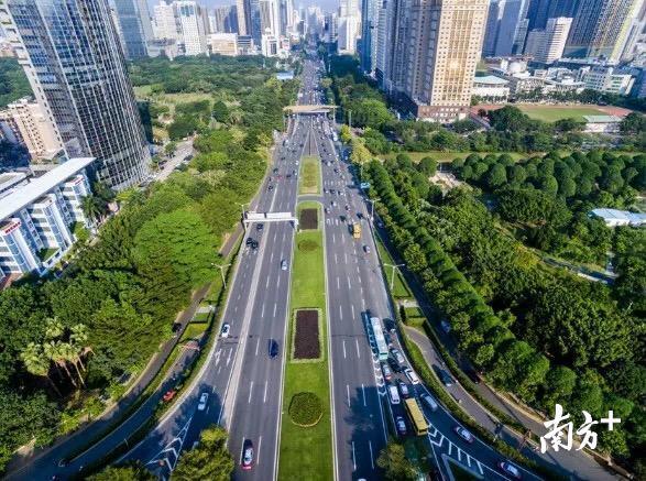 深圳城市美景