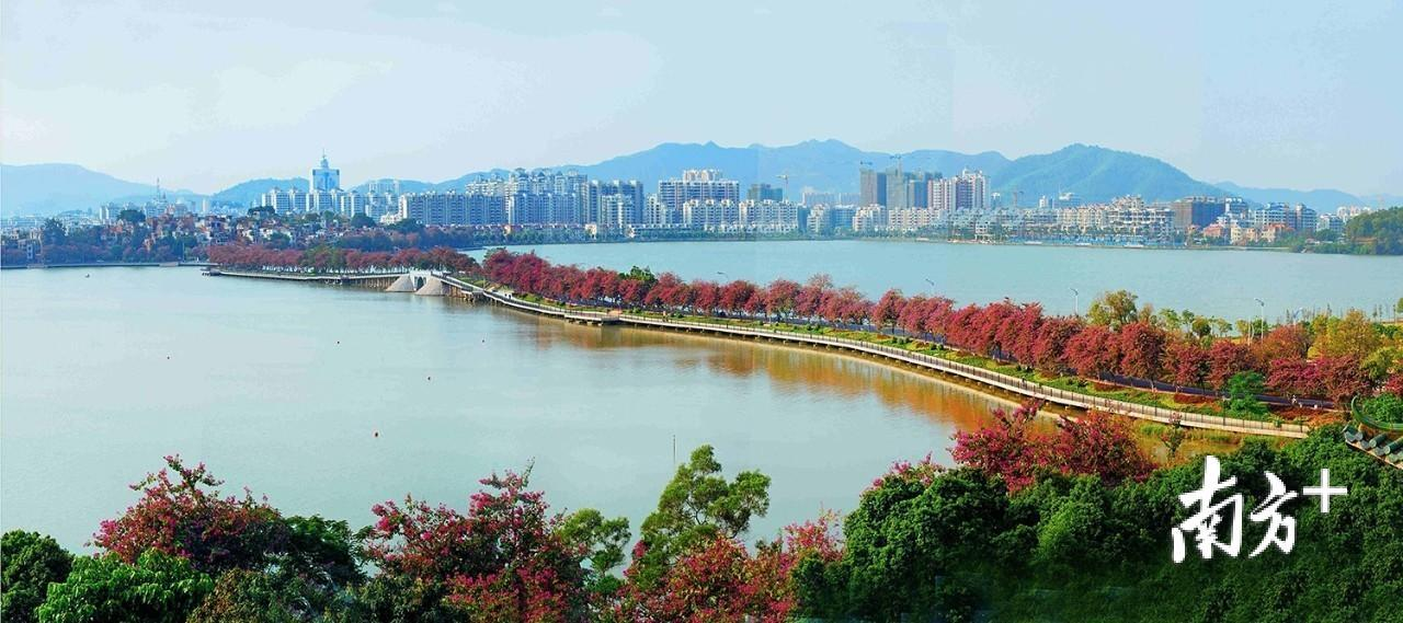肇庆城市美景