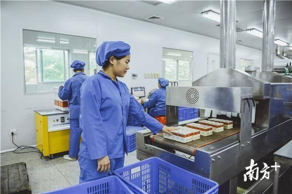 现代化的机械产线被运用到更多的药品工厂。