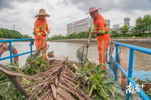 """禅城区环境卫生养护中心对140多万平方米的汾江河和佛山涌水域和护坡开展""""清漂""""行动。"""