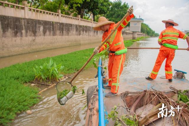 经过十天的努力,威尼斯人网上娱乐官网区环境卫生养护中心已清理黑点近100处,清理漂浮垃圾120多吨。