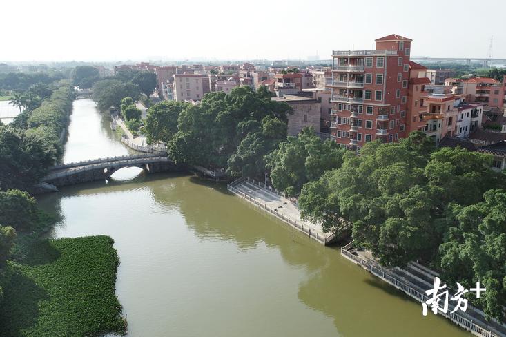 通过推进污水管网建设,南庄罗南村的水环境得到大幅改善。图为南庄罗南隆庆村水乡风貌。南方日报记者 戴嘉信 摄