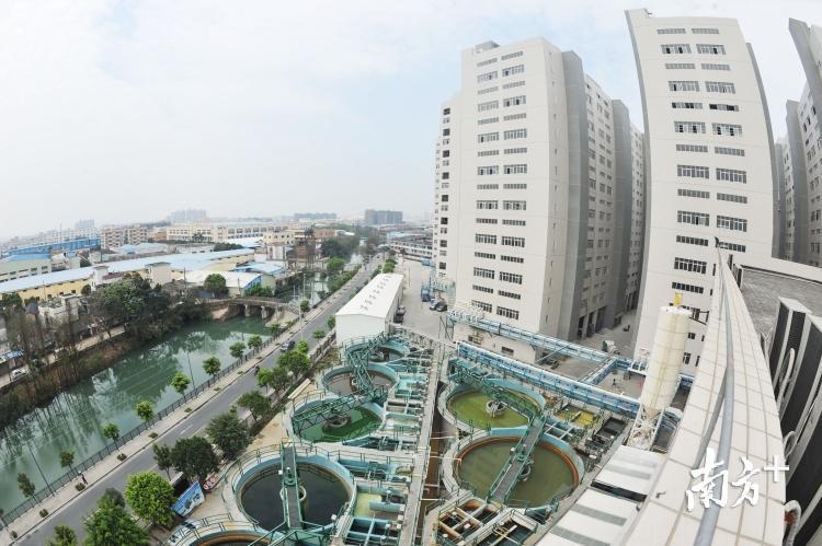 容桂恒鼎工业园打造了顺德村级工业园升级改造的样本。南方日报记者 戴嘉信 摄