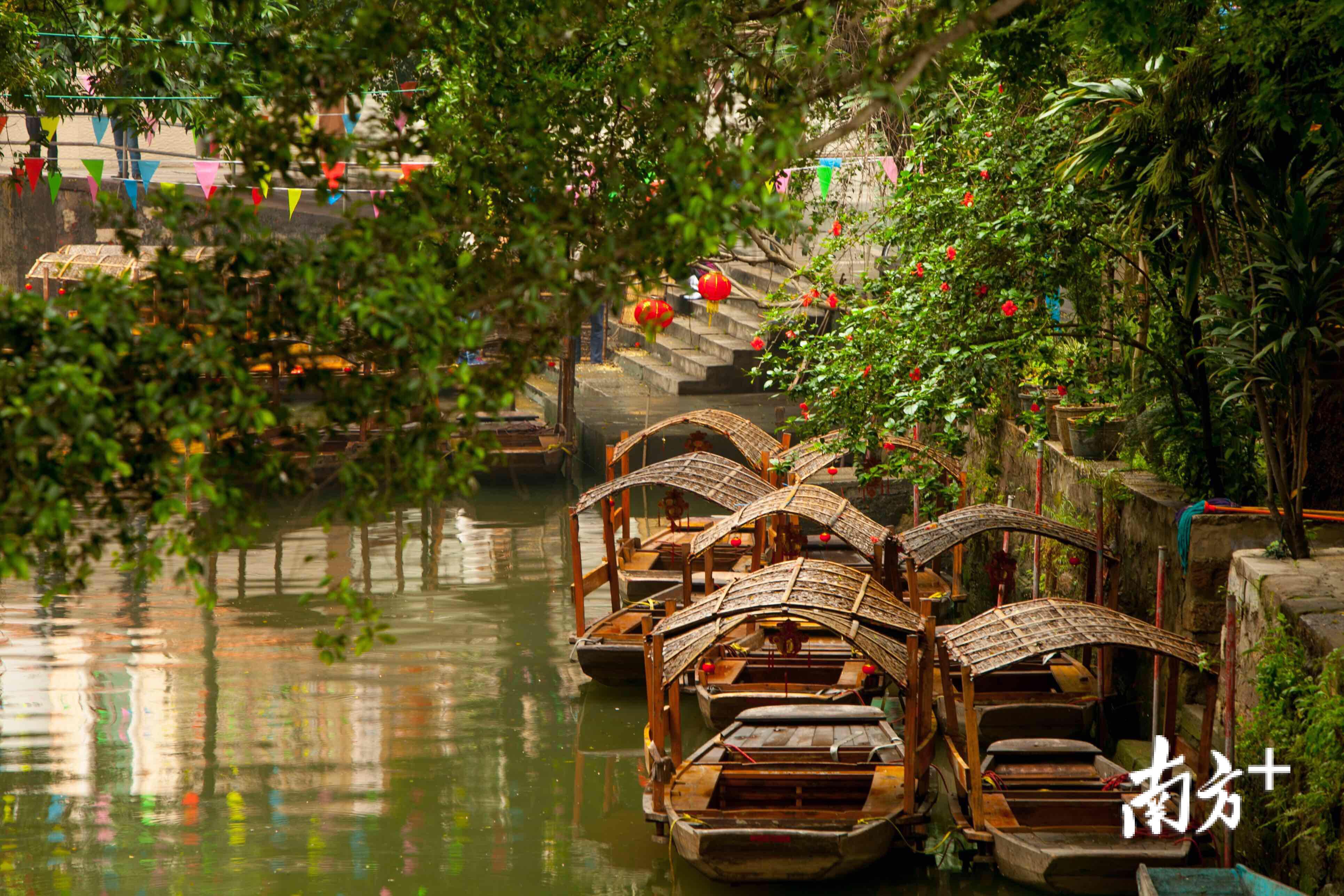 """逢简村河涌纵横交错,鱼塘星罗棋布,是珠三角""""桑基鱼塘""""模式的重要基地之一。杏坛宣办供图"""