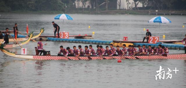 500米直道赛决赛,顺德乐从罗浮宫龙舟队队员们凝神秉气。