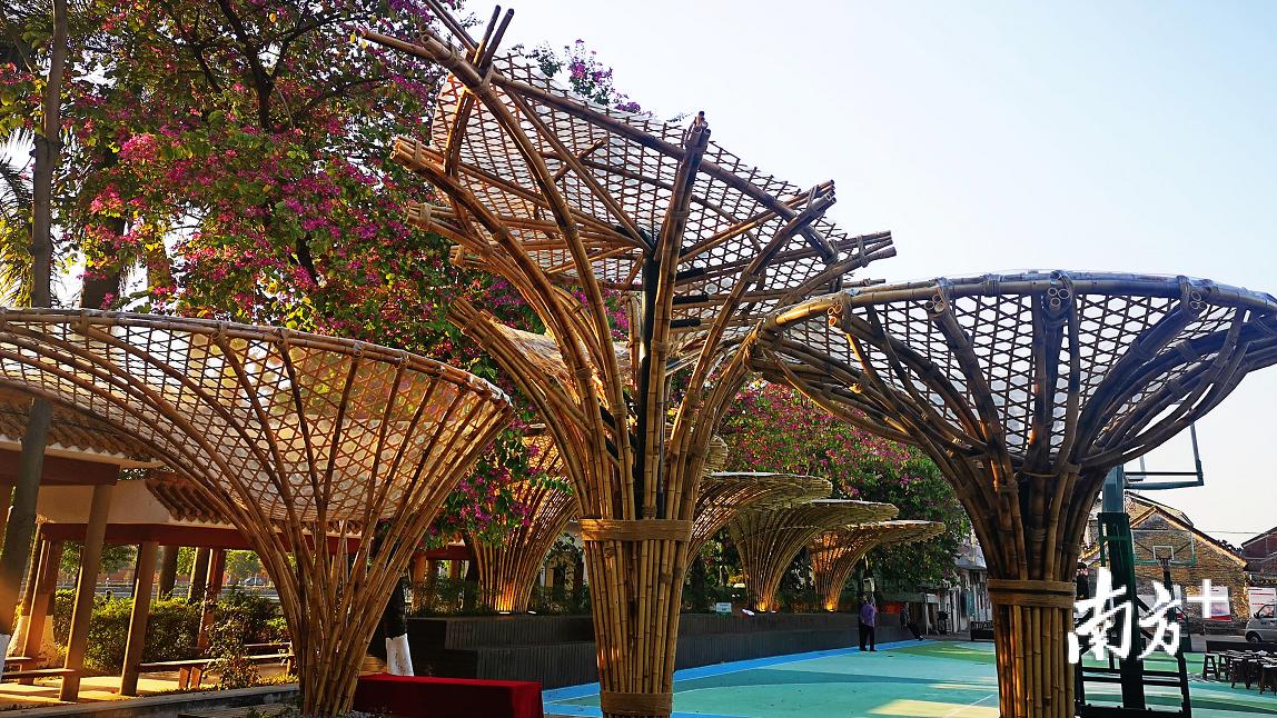 两排全新的休闲竹廊竹伞已成为长岐古村一道特别的风景线。