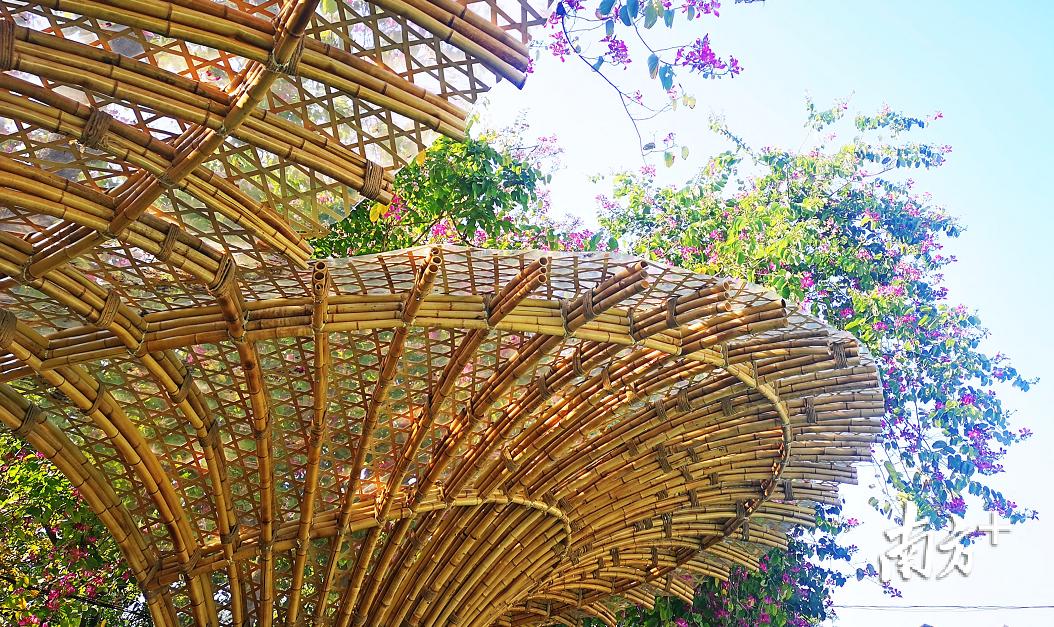 历时5个月设计建筑的芦苞长岐村竹构景观正式落成。