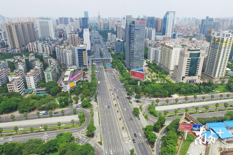 禅城过境车辆多,占了佛山大道、季华路等主要干道车流量的60%以上。戴嘉信 摄