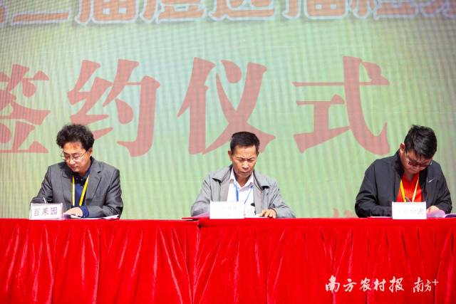 京东物流、百果园、澄迈福橙产销协会现场签订三方合作协议。
