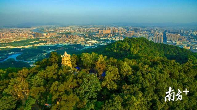 黄岐山丛林公园