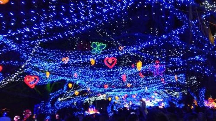 惠城区西湖灯会下周亮灯,持续至2月9日