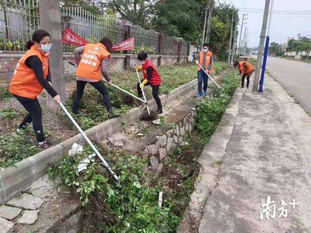 江门台山台城街道东坑村委会工作人员在清路路边杂草。受访者供图