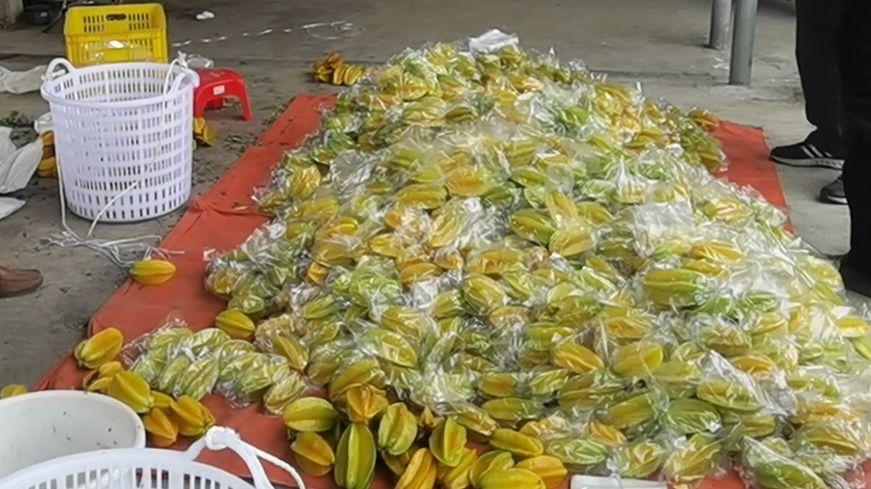 已收获的红杨桃正等待包装,准备通过电商平台销售。