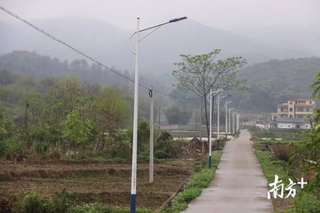 石溪村134盏路灯温暖村民的回家路。