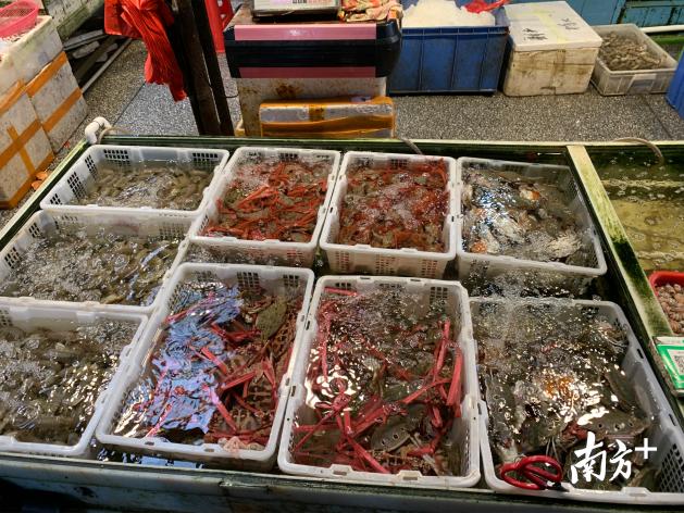 中南批发市场水产品档口产品种类丰富。王蓓蓓摄