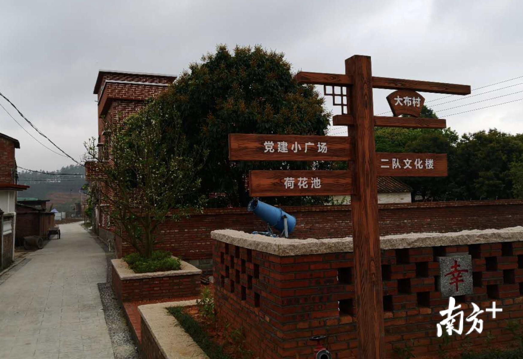 大布村正在创建高明区乡村振兴示范村。盛正挺 摄