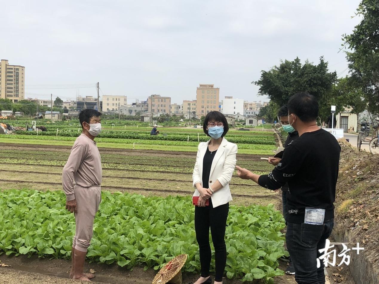 汕头市纪检监察干部到田间地头走访农户。