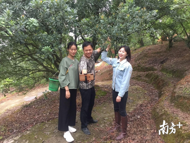 陈燕鹏与团队成员正在进行直播推介,宣传金灶镇名优水果。