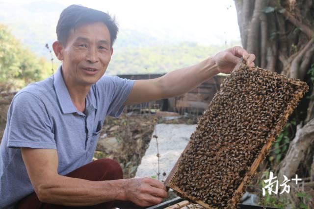 """4月19日,雷岭镇龟山村蜂农雷伟文满脸喜悦地说:""""小小蜜蜂酿蜂蜜,养蜂给我带来不错的收入和比较自在的生活。"""""""