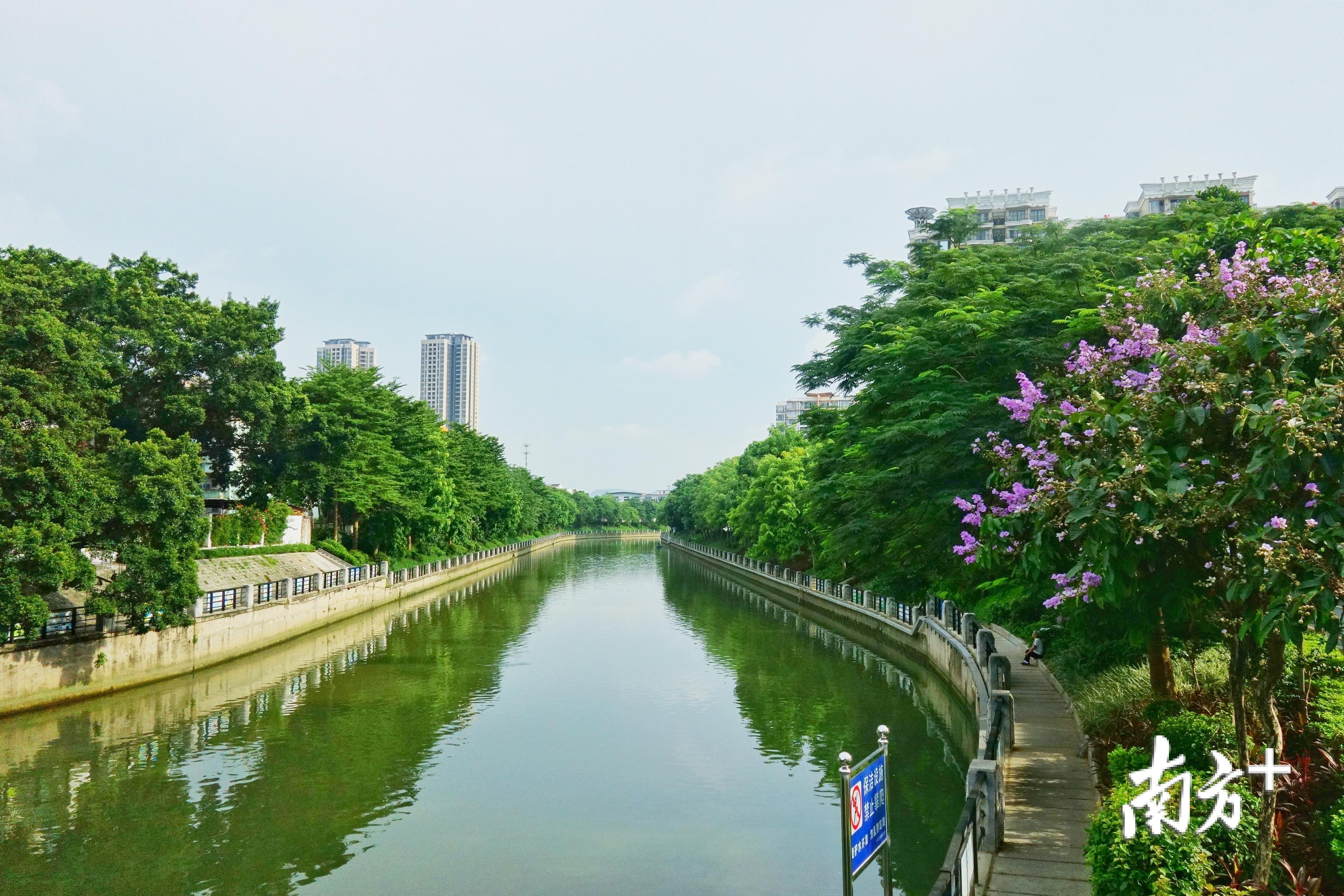 车陂涌整治入选全国治水典型案例。