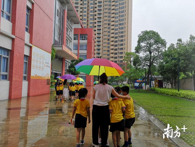 下雨了,北江小学的老师们撑着伞把学生送回教学楼,一把把雨伞,汇成了一条流动的彩虹。