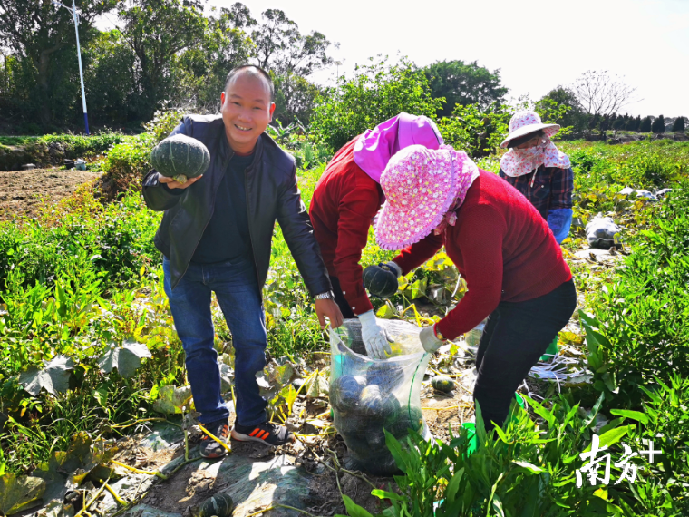 湖东镇竹林村的南瓜试验基地里,第一书记兼驻村队长庄烽和种植户共享丰收的喜悦。受访单位供图