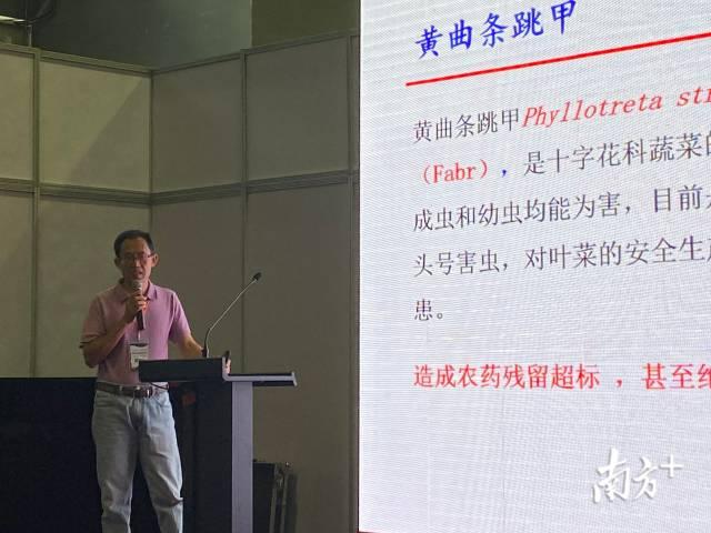 广东省农业科学院植物保护研究所研究院冯夏