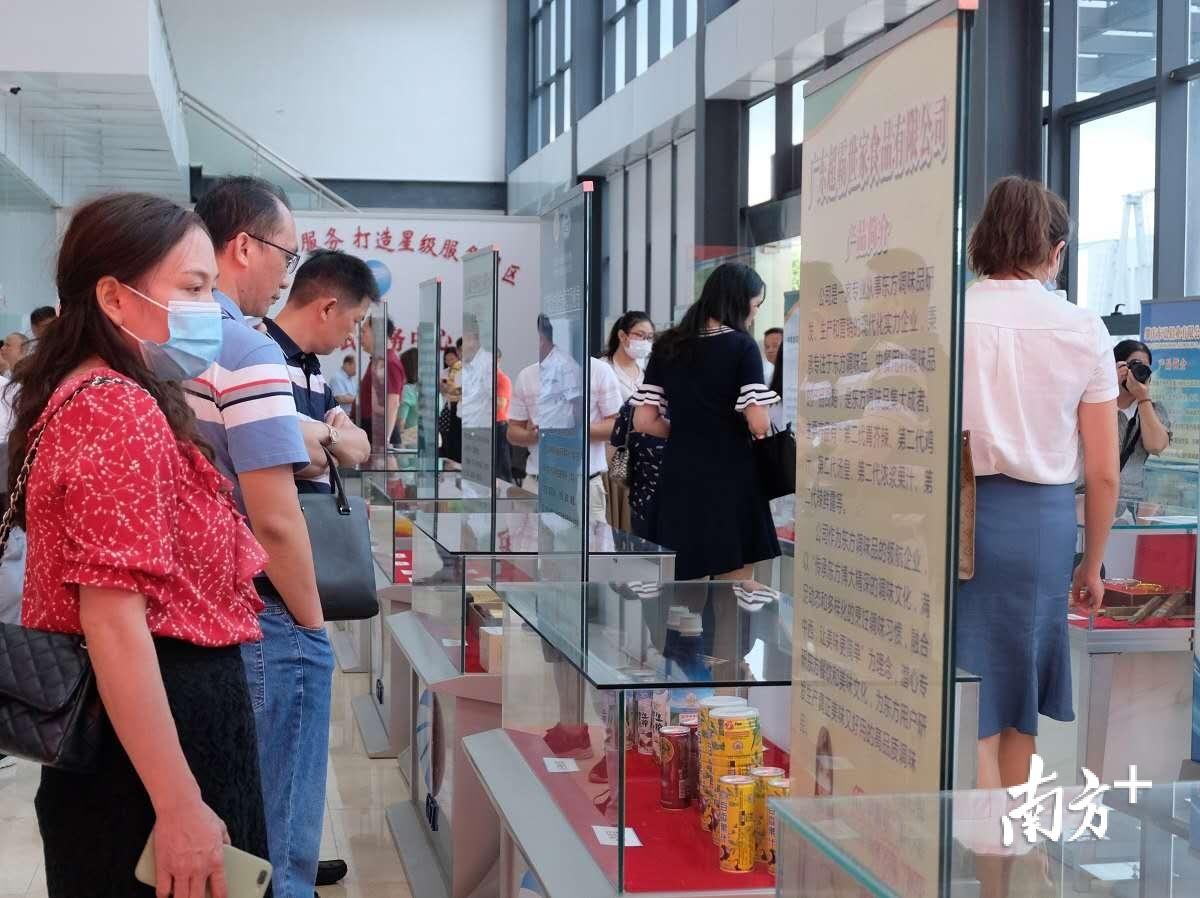 客商走进广佛肇(怀集)经济合作区管委会了解投资环境。蓝单 摄