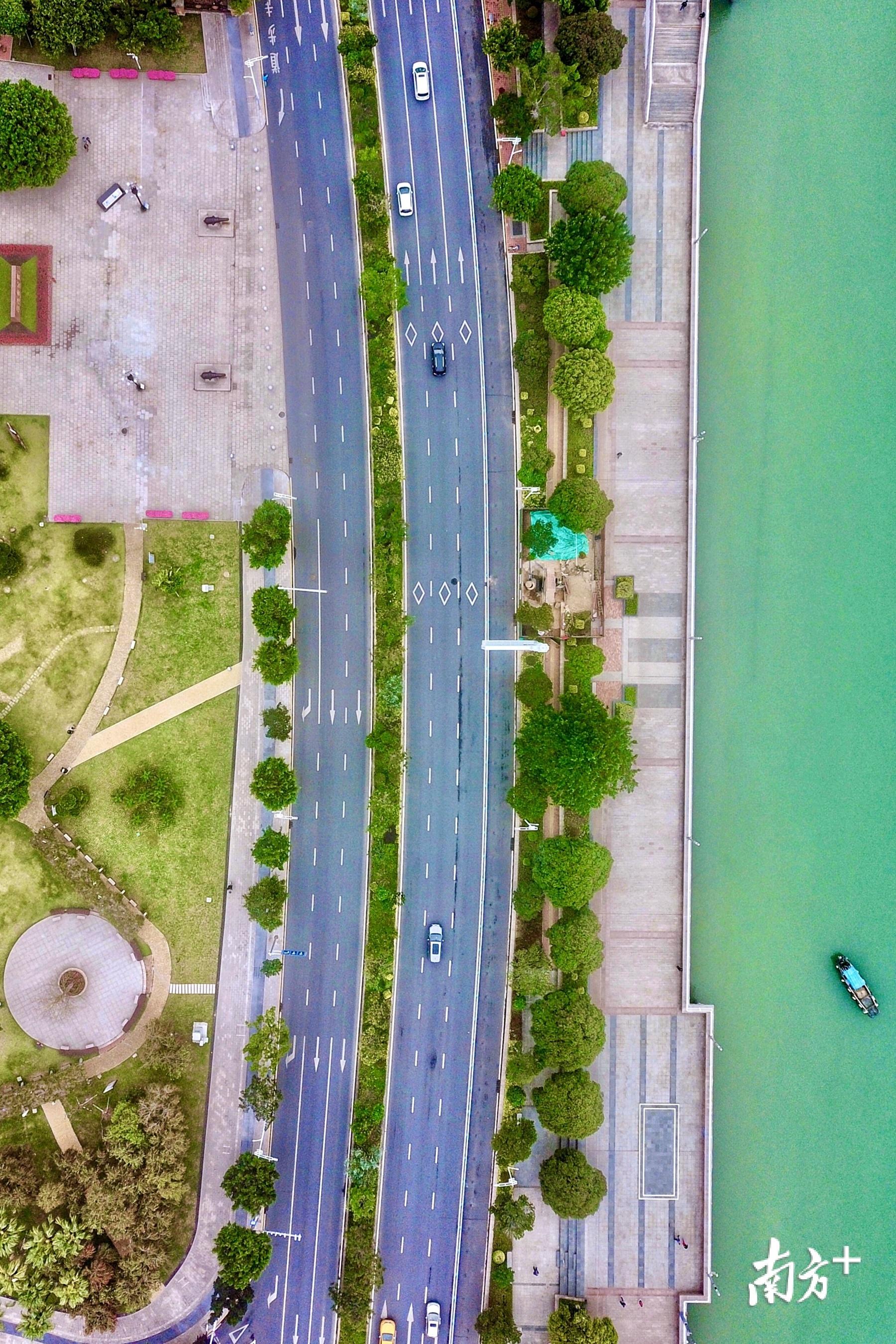 近年来,随着道路改造升级,主干道成了城市的颜值担当。