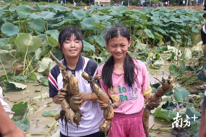 """两位小姑娘挖到了莲藕,立马成为了""""模特""""。陈咏怀 摄"""