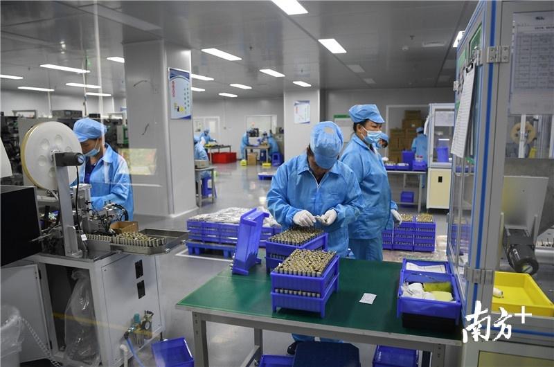 今年5月,韦贤芬入职广西东来新能源锂电池生产扶贫车间。该项目可提供就业岗位200个,年产值可达2亿元以上。杨兴乐 摄