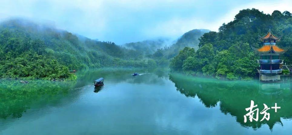 鼎湖山自然保护区风光。谢耀明摄。