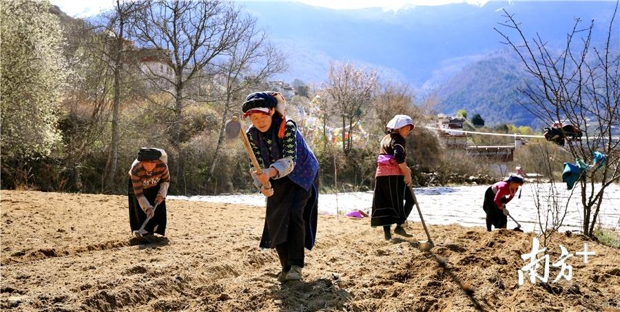 妖枯村村民在劳作。