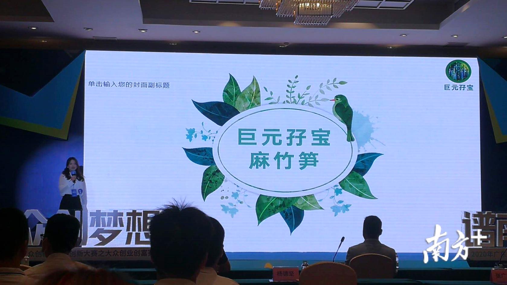 清远电商助农项目——巨元孖宝麻竹笋。