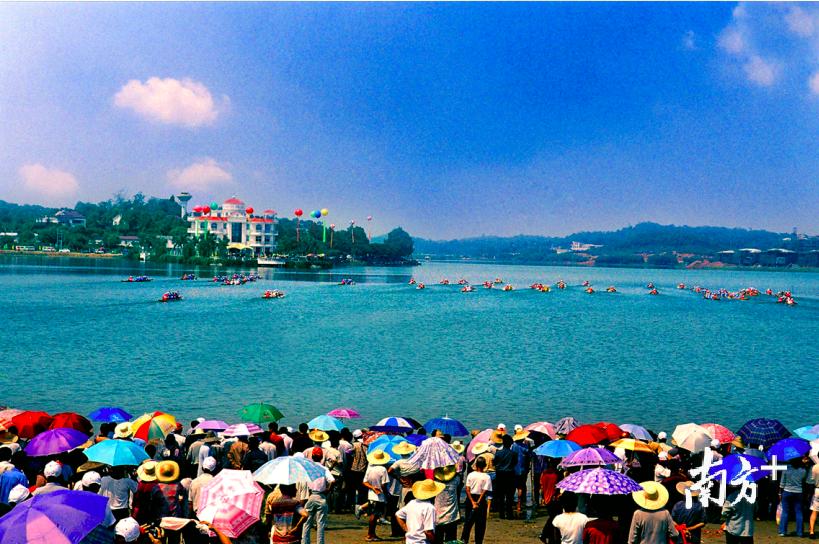丹灶每年举办的传统扒龙舟比赛,吸引来自各地的市民观赏。丹灶宣办供图