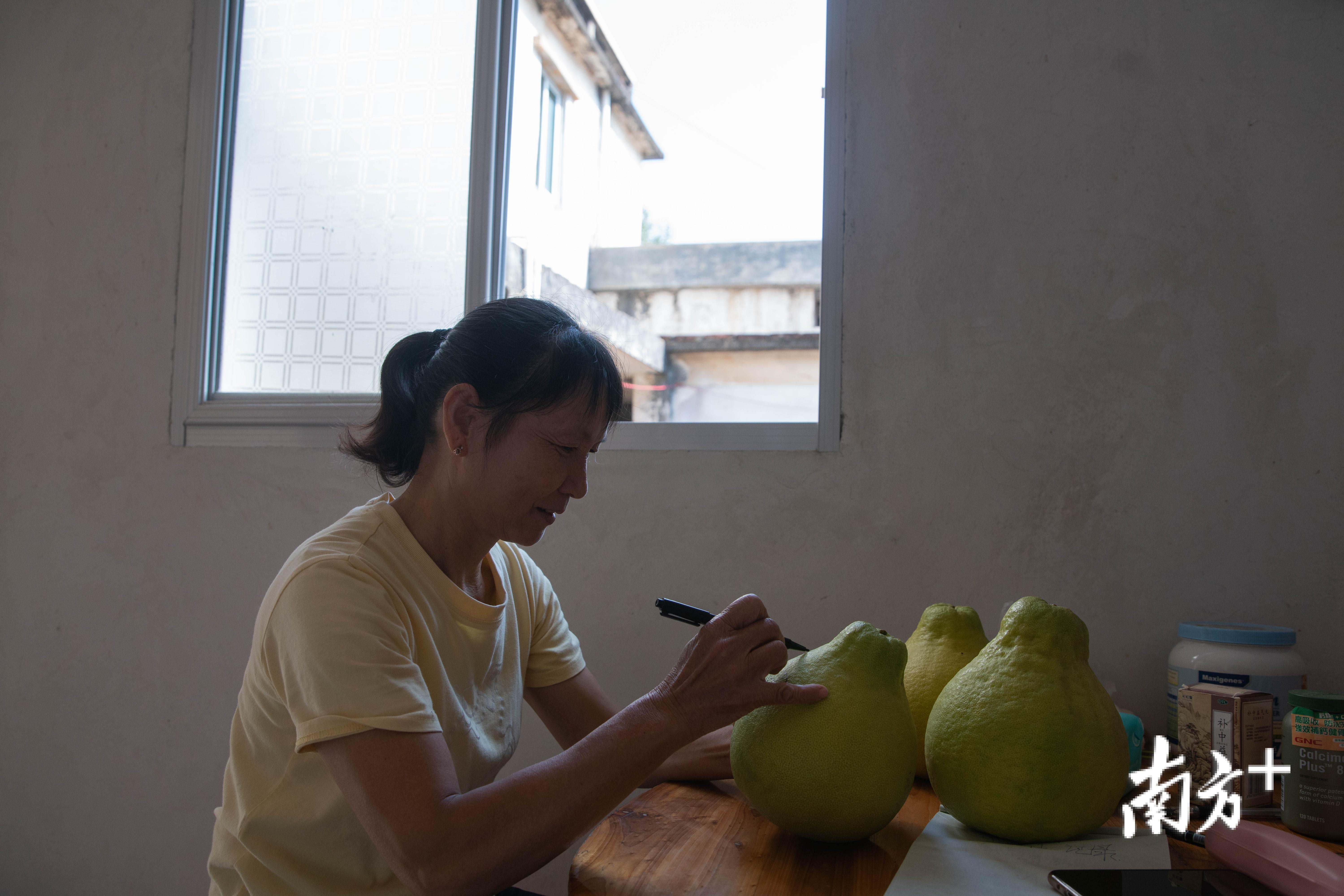 张永珍在自家柚子上作画