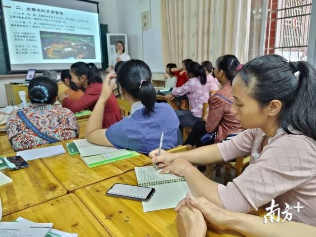 在生态农业技能培训中,廖周云成为了讲师。范永敬 摄