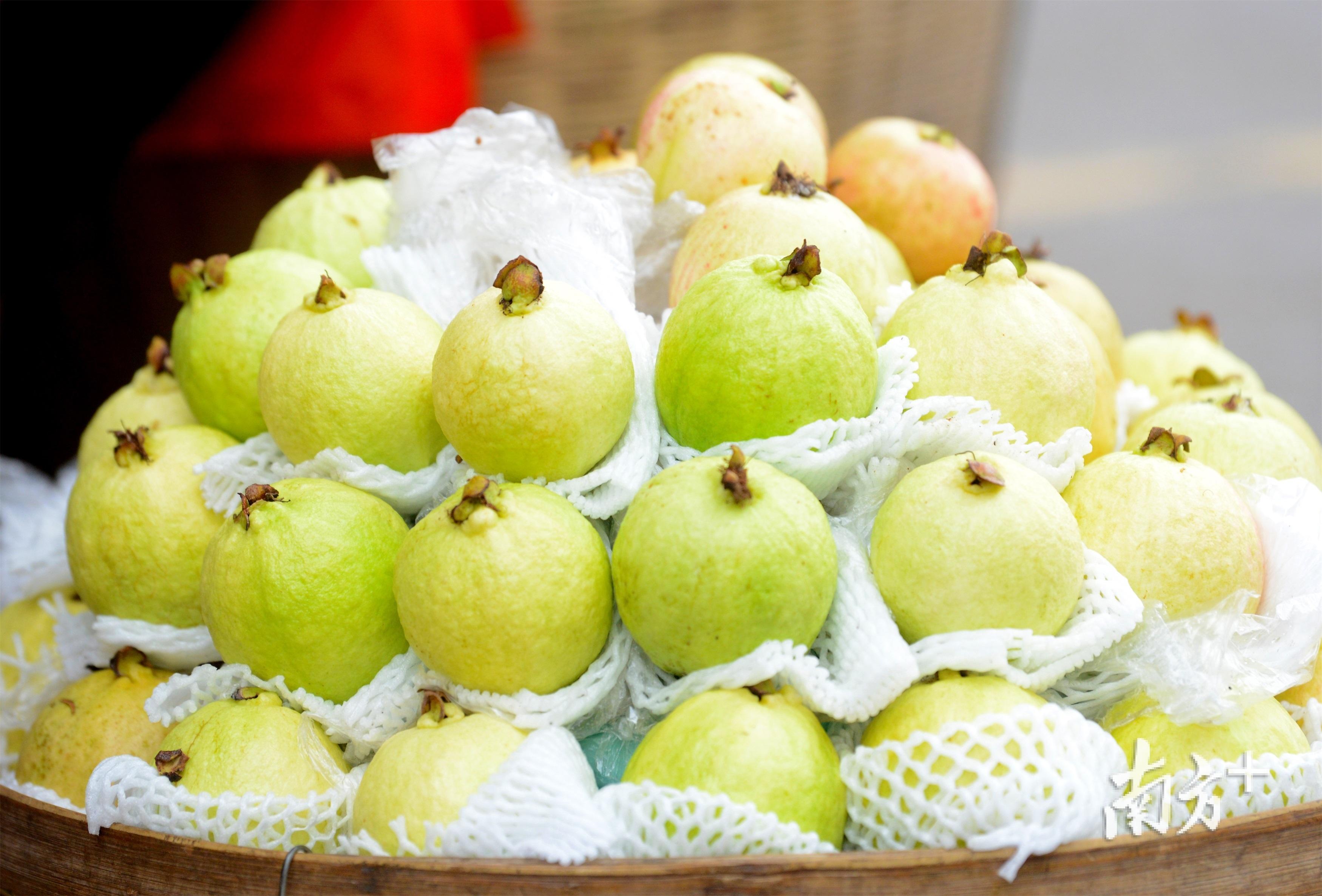 """廉江番石榴登上""""2020第一批全国名特优新农产品""""名录。"""