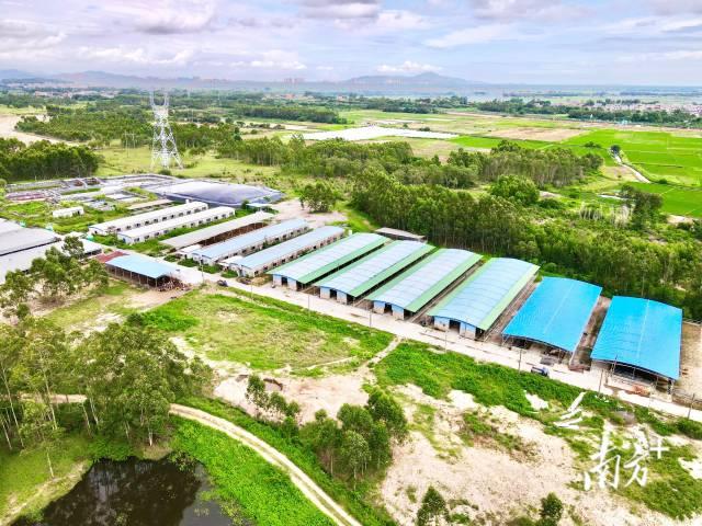 规划建设产业园区