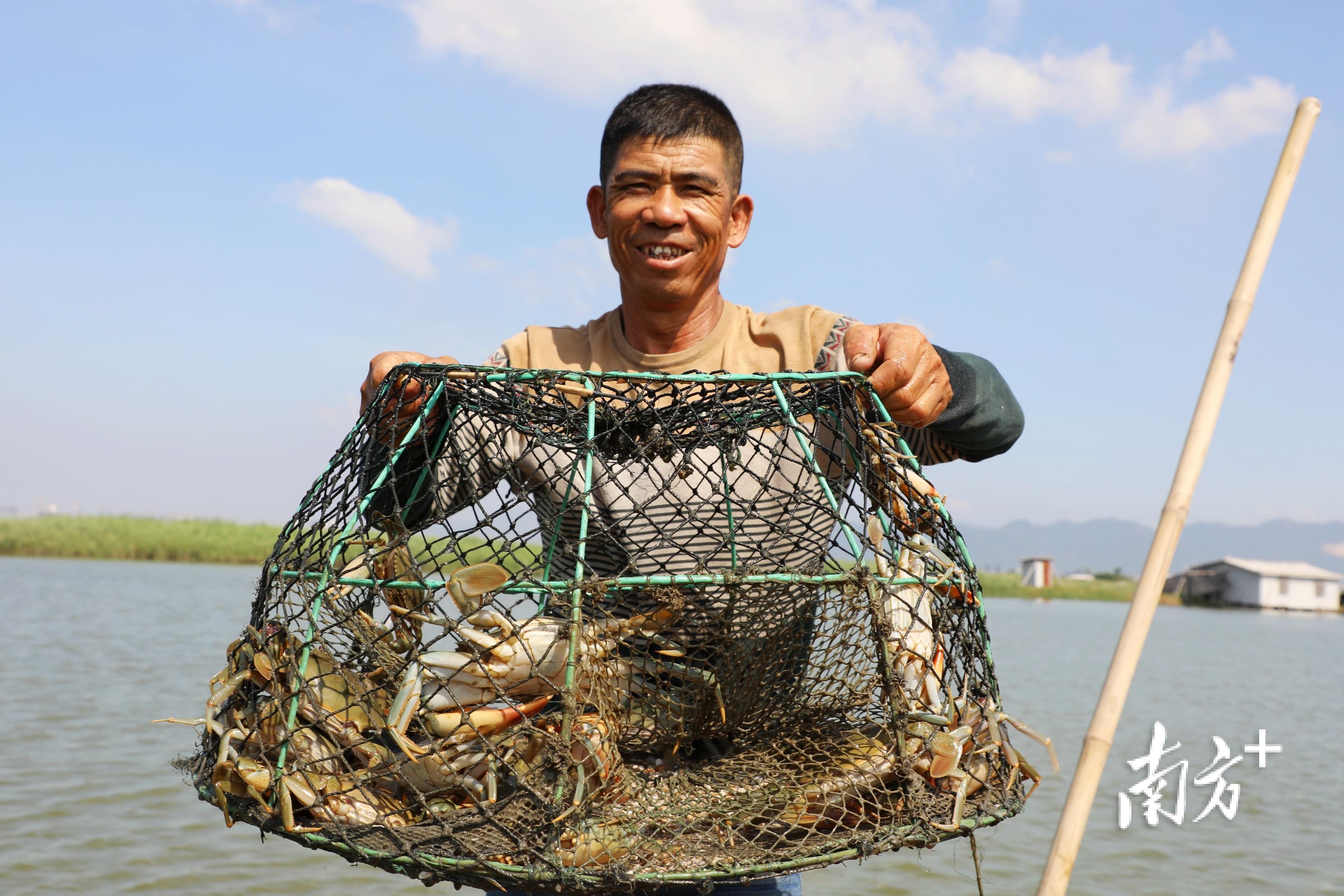 林惠庆提着刚出塘的一笼青蟹,脸上露出了笑容。  南方+ 张伟炜 拍摄