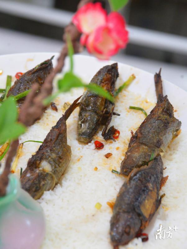 """""""金稻茗鱼"""",寓意鱼和稻和谐共生。黄津 摄"""