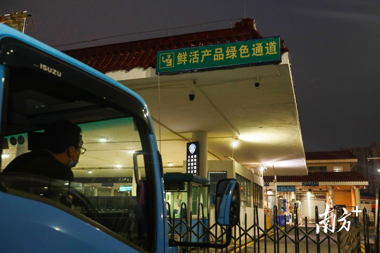 日均百余车次内地农产品运往澳门市场。 俞波供图