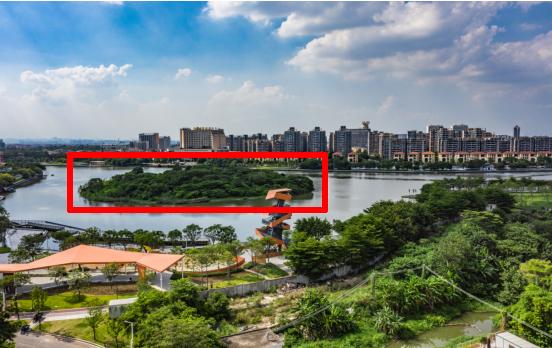 红色方框内岛屿为龙湾岛。