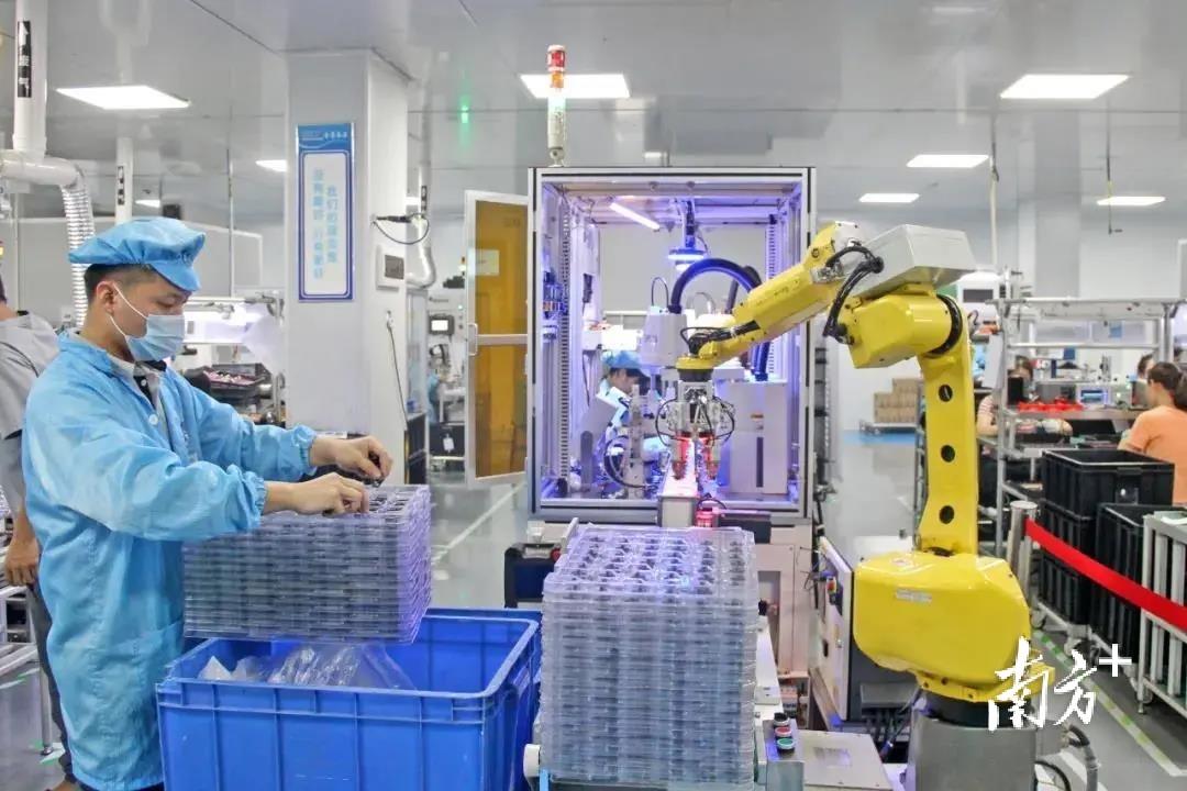 肇庆晟辉电子科技有限公司。 通讯员供图