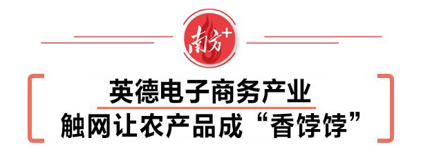 """英德电子商务产业▶▷触网让农产品成""""香饽饽"""""""