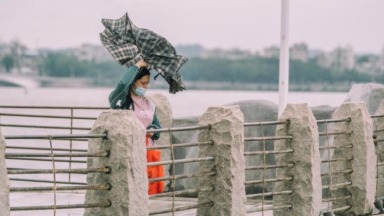 """惠声惠色 台风""""圆规""""携风带雨,惠州""""一夜入秋"""""""