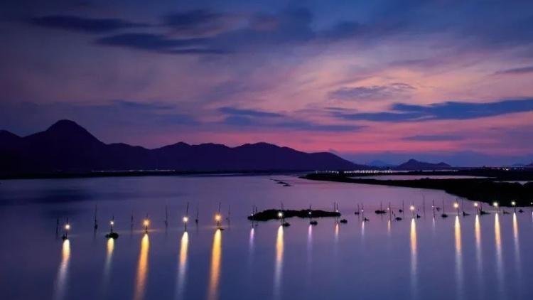 陆丰乡村振兴示范带最美景点是哪里?结果出炉